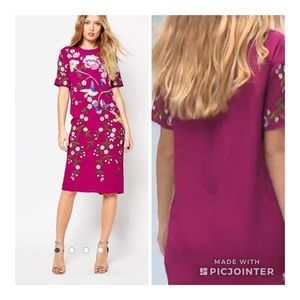 Asos Bird and Floral Embroidered Shift Dress Sz 4